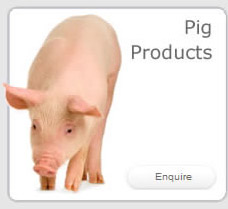 Pig Products